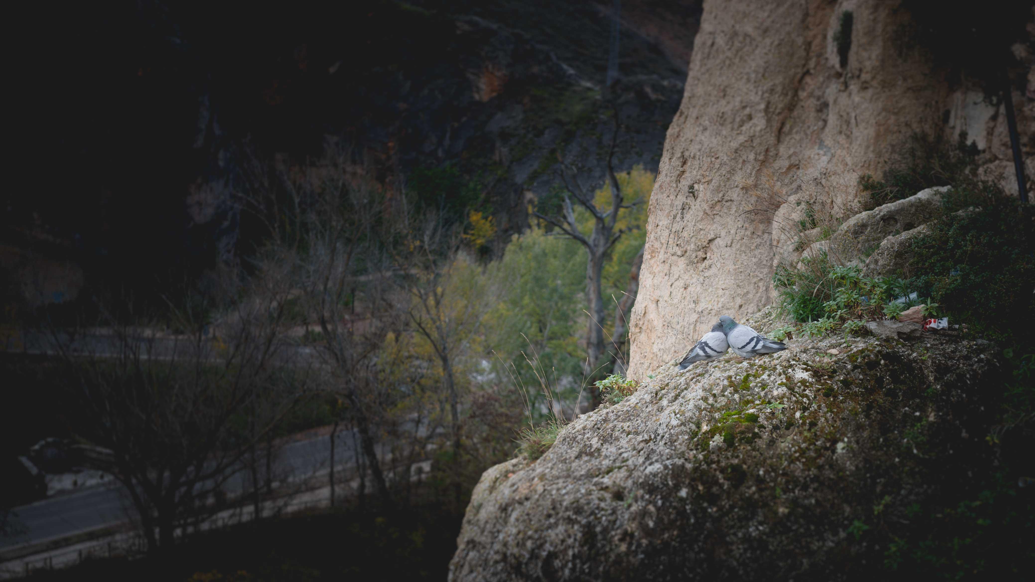 Cuenca-2014-104