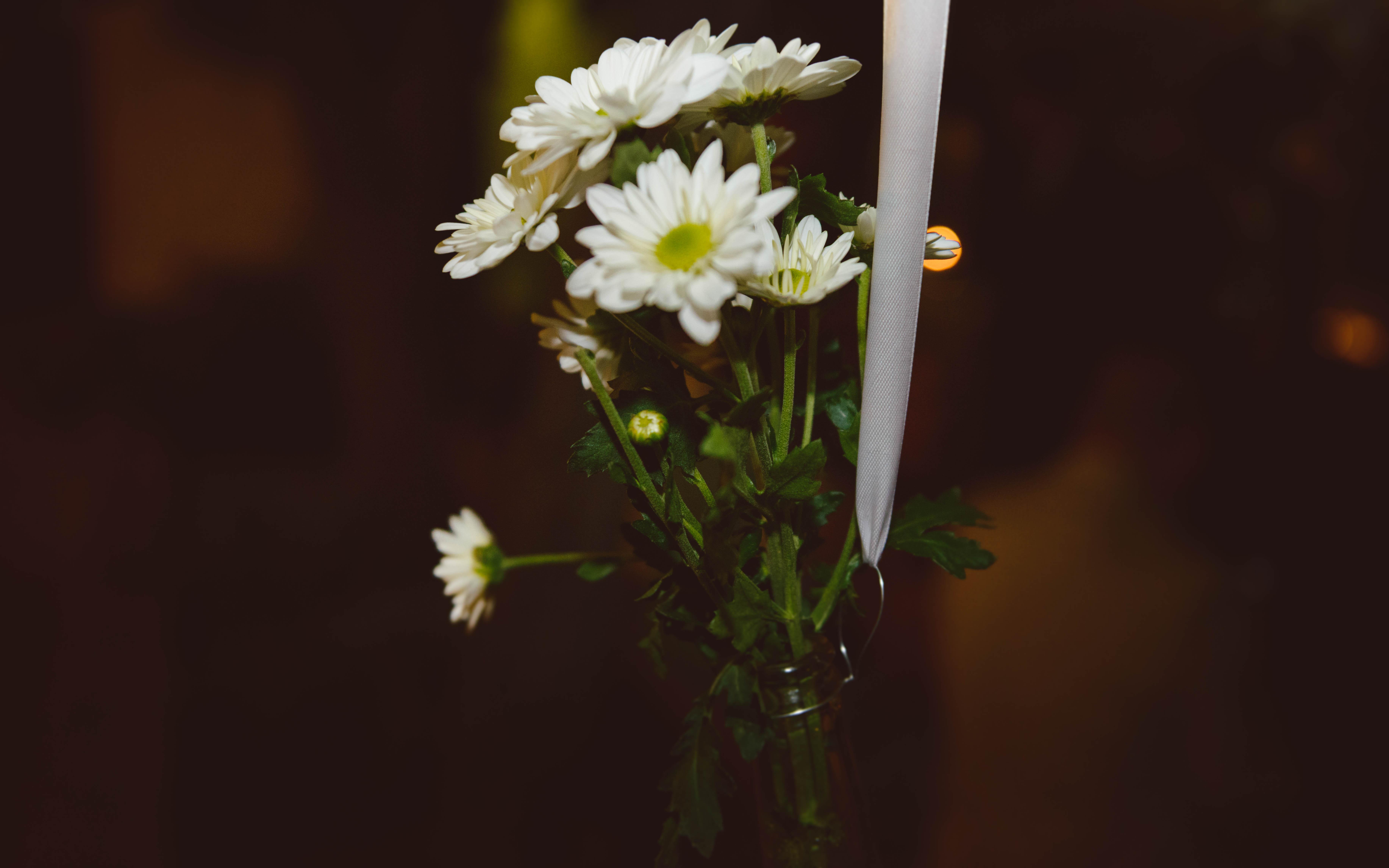 boda el puerto de santamaria-644