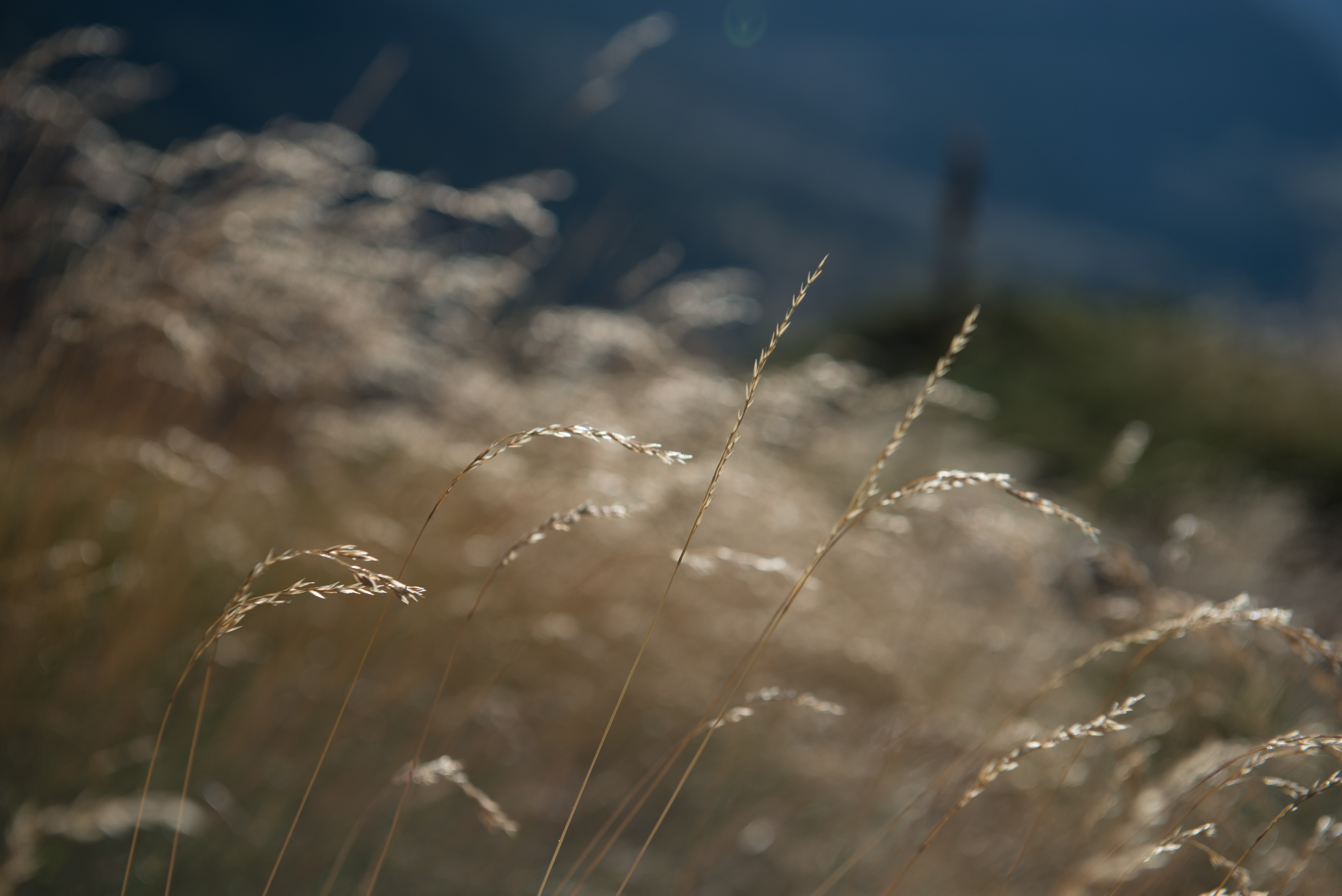 fotografa zaragoza-579
